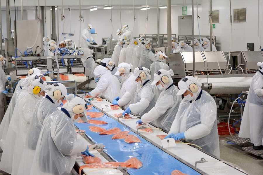 Planta de procesos de Blumar Seafoods