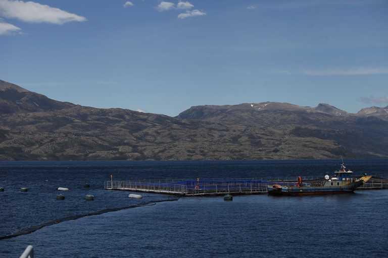 Centro de cultivo de salmón en la Región de Magallanes (Créditos: Editec)
