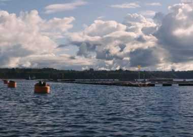 Revelan nuevo ranking de antibióticos en la industria del salmón (Foto: Oceana Chile)