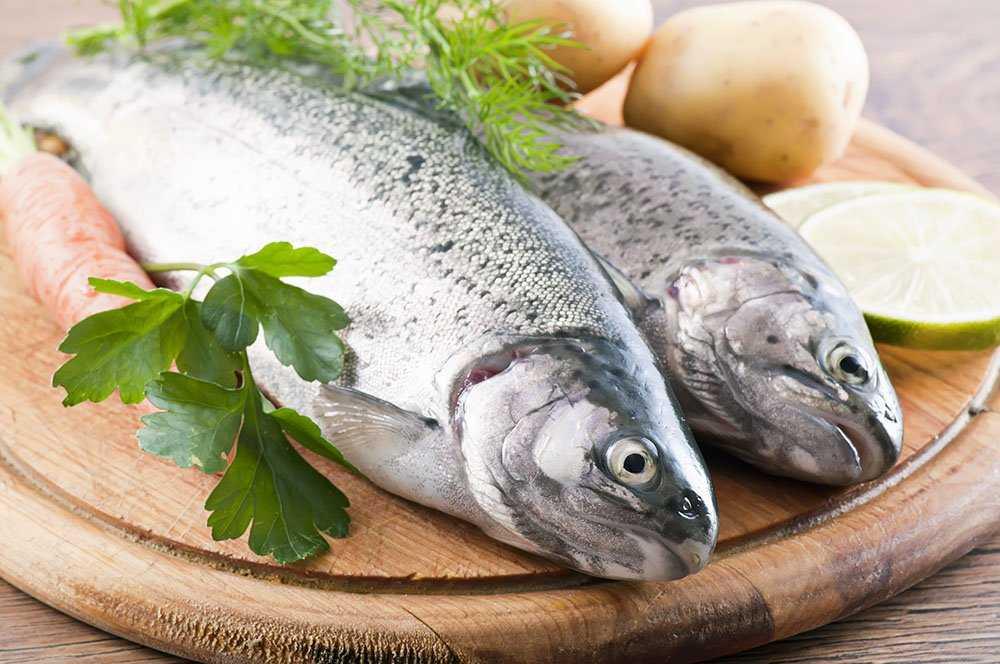 Entregan consejos de alimentación saludable para este verano (Foto: SNP)