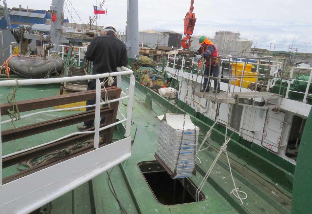 Trabajadores pesqueros presentan plan de mitigación social