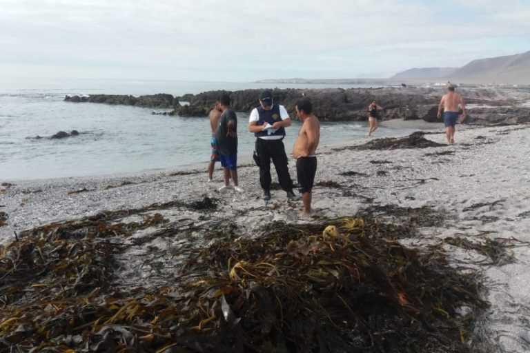 Incautan 200 kilos de huiro negro en playa de la comuna de Iquique (Foto: Armada)