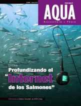 """En Chile: Profundizando el """"Internet de los Salmones"""""""