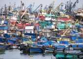 ADEX: Trabas e informalidad impiden mayor crecimiento del sector pesca (Foto de contexto. Archivo Tesacom)