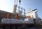 """Citan """"tres obstáculos"""" para la competitividad de la industria de ingredientes marinos (Foto: SNP)"""