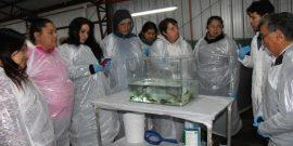 """Comunidades kawésqar visitaron piscicultura """"Los Cipreses"""""""