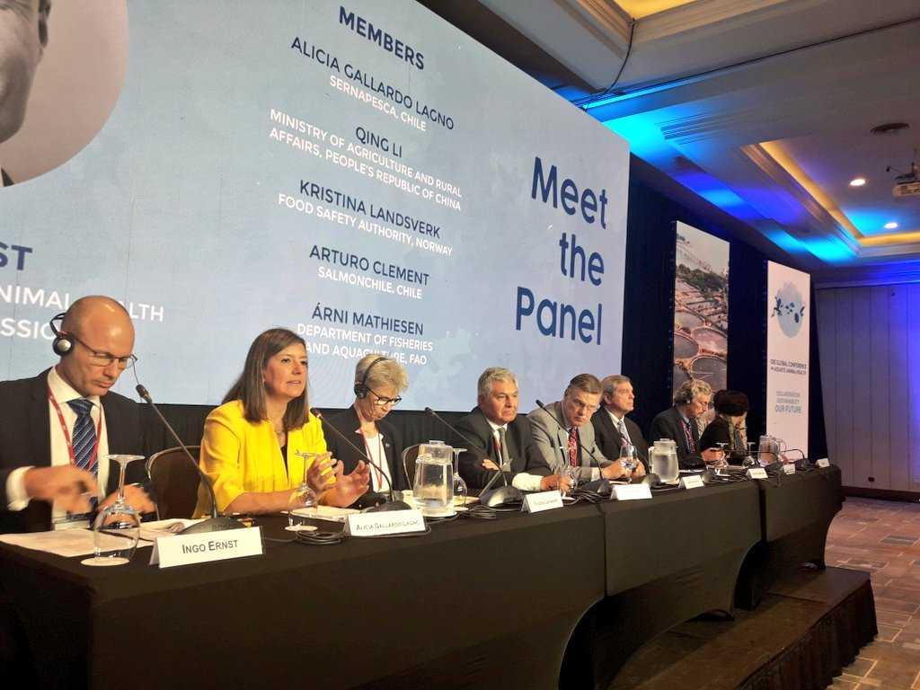 Enfatizan en la relevancia de que Chile albergue conferencia de la OIE