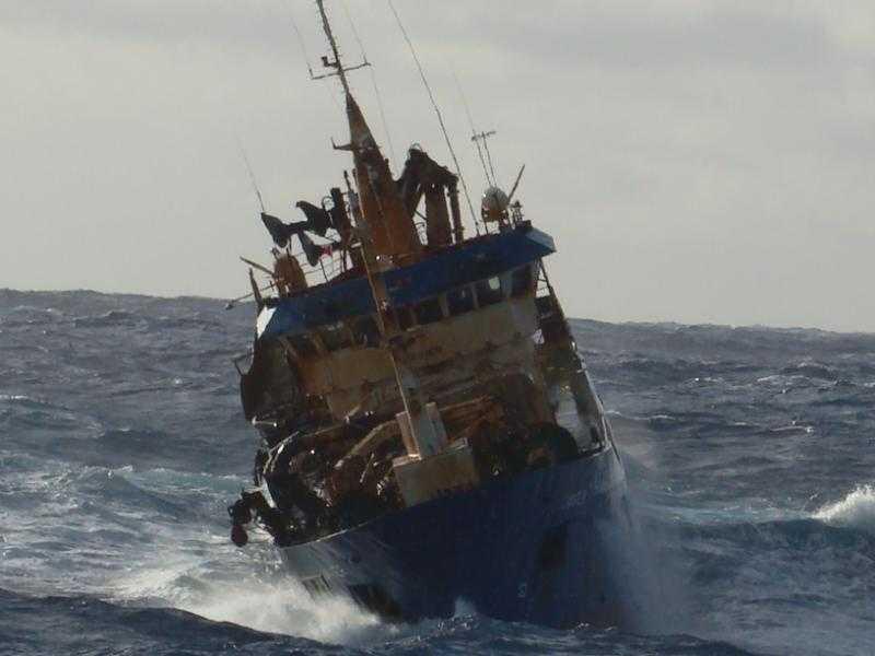 Ley de la Jibia: Trabajadores pesqueros rechazan declaraciones del senador Quinteros