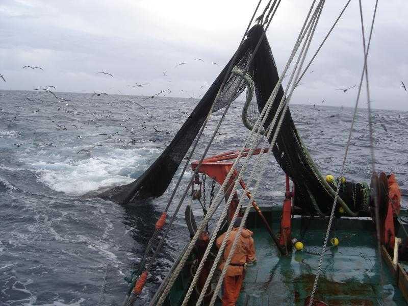En Argentina: Experta chilena expuso sobre Enfoque Ecosistémico de la Pesca