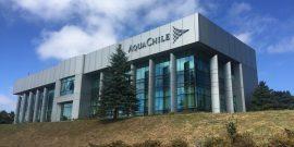 AquaChile confirma al presidente de su directorio