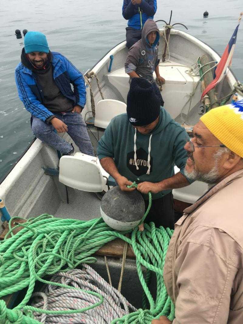 Busca potenciar el escalamiento productivo acuícola en organizaciones de pescadores1