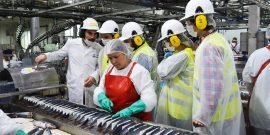 Mes del Mar: Vecinos y estudiantes conocieron procesos de la industria pesquera