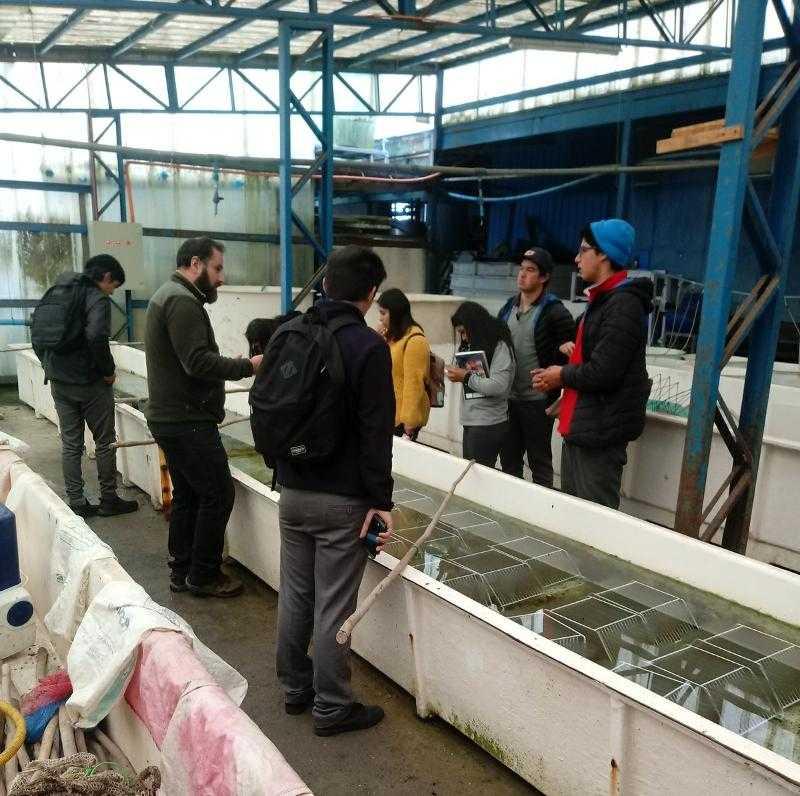 Estudiantes de Cochamó visitaron instalaciones de Fundación Chinquihue1