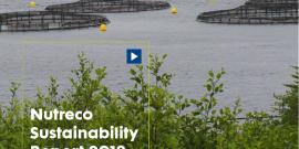 Nutreco Reporte Sustentabilidd 2018