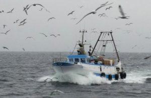 Pesquera chilena extiende certificación internacional de sustentabilidad (foto: Friend of the Sea)