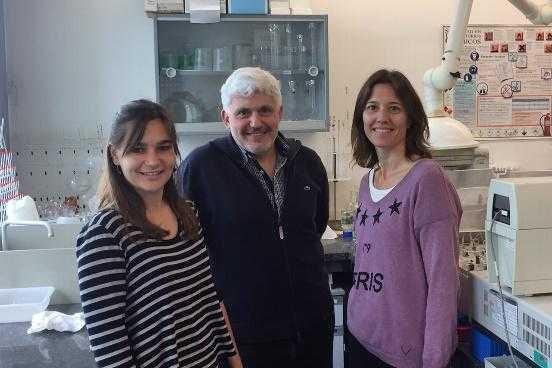 Publican estudio sobre la expresión génica de la lubina