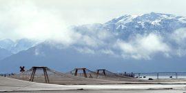 En worshop: Analizarán la evolución de la productividad de la salmonicultura chilena (foto de contexto)
