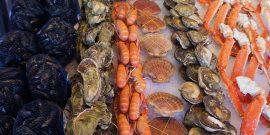 """""""Seafood Age"""": Desarrollan alimentos marinos sustentables (referencial)"""