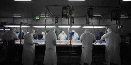 Aquagestión realizará seminario internacional sobre patógenos en la industria alimentaria (foto referencial)