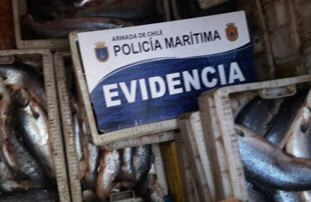 Foto: Gentileza Armada de Chile