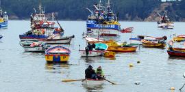 Berger dice respaldar proyecto que establece el Día de la Pesca Artesanal