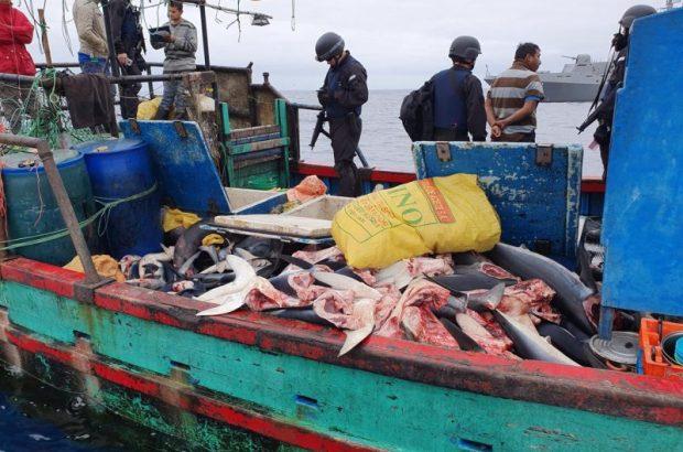En lo que va de año: Diez son las embarcaciones peruanas capturadas por pesca ilegal en Chile