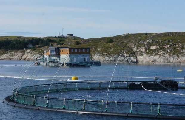 Aqua Nor 2019: Visita al Ocean Farm 1