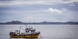 En pesca y acuicultura: Inician capacitaciones sobre adaptación al cambio climático (foto: Copas Sur-Austral)