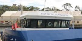 """Sadie"": Salmonicultora lanza nave que permite limpiar redes"