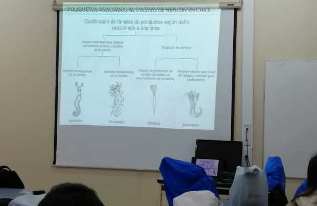 Curso sobre enfermedades del abalón
