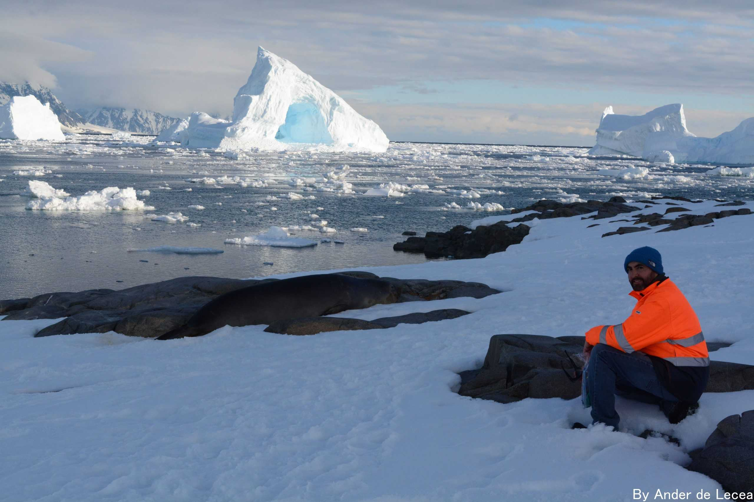 Cancelan dos eventos científicos que se realizarían en Punta Arenas