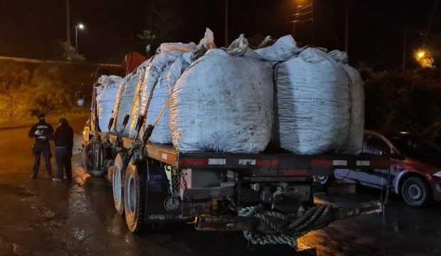 Decomisan 8 toneladas de choritos en Chiloé