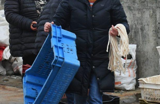Proyecto de la UNAP realizó primer repoblamiento de luga negra en Ancud