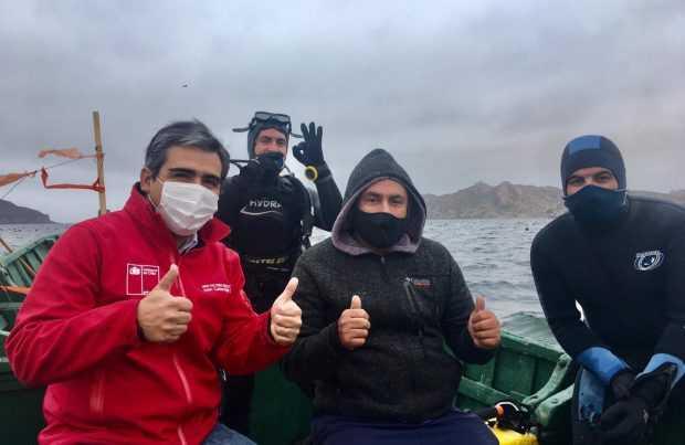 Pescadores inician repoblamiento de alga pelillo en La Herradura