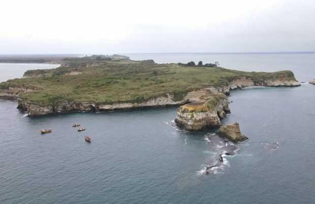 Maullín: Inspeccionan repoblamiento de erizos en Punta Chocoi