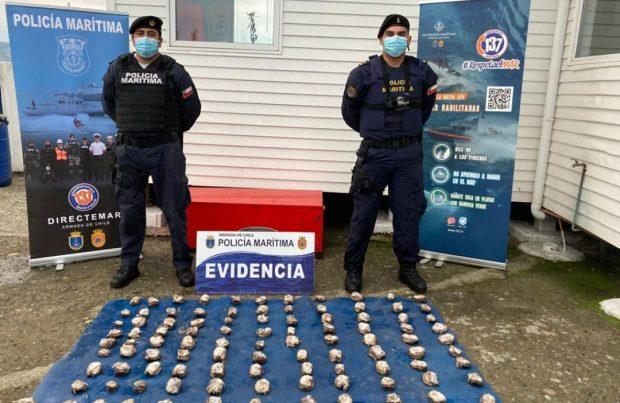 En Chiloé: La Armada detiene a tres personas por extracción de locos