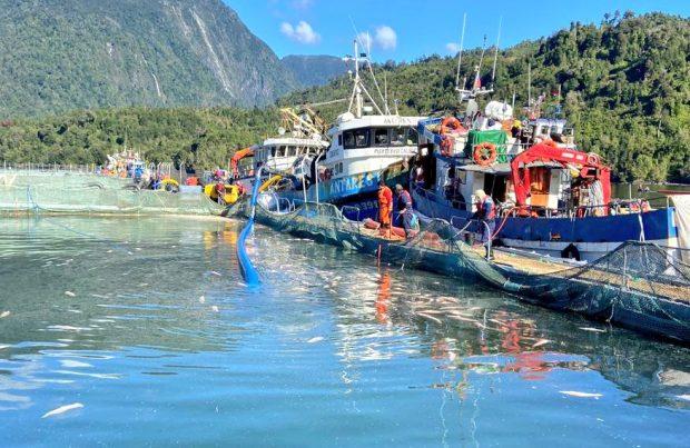 Monitorización remota y áreas de riesgo: Una reflexión sobre la salmonicultura en el sur de Chile (foto Sernapesca)