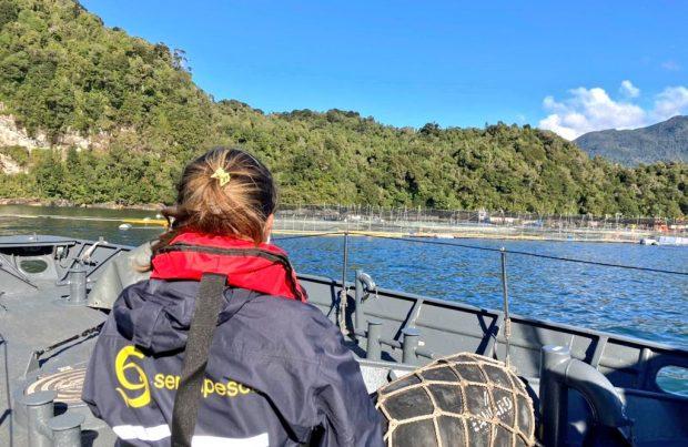 Sernapesca cierra la contingencia por FANs en Aysén y ahora concentrará el monitoreo en Los Lagos (foto Sernapesca)