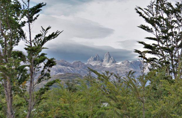 Organizaciones piden que la nueva Constitución consagre la protección de la naturaleza y reconozca el valor ambiental de la Patagonia (foto Alejandra Sáenz)2