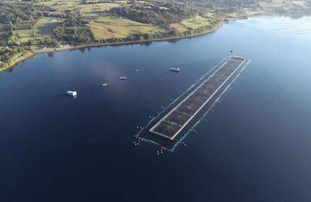 Empresas chilenas firman contrato con el Estado irlandés para instalar barreras de microburbujas en centros de cultivo de salmón (foto LOWO2)