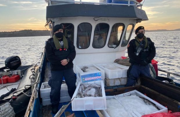 La Armada decomisa dos toneladas de merluza en Quemchi