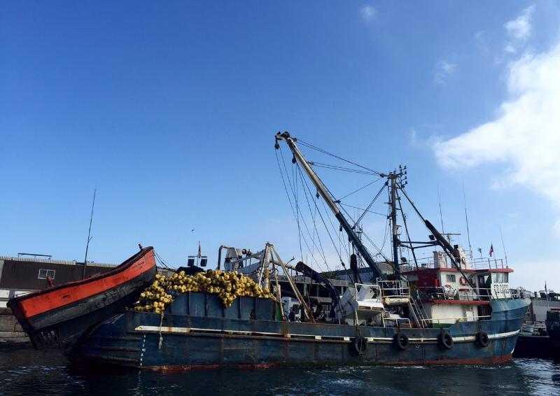 Asipnor_Queremos generar un salto cualitativo promoviendo la pesca sustentable1